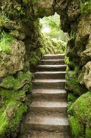 stepping steps.jpg
